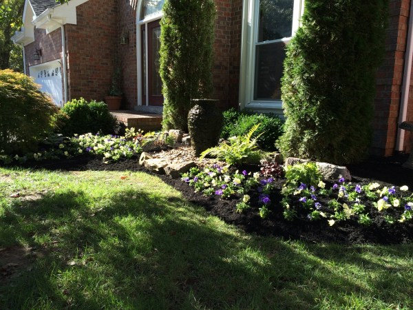 landscaping and ideas