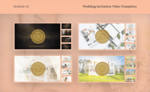 Levidio Invitation Templates Bundle & OTO by Maulana Malik