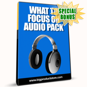 Special Bonuses - February 2017 - What To Focus On Audio Pack