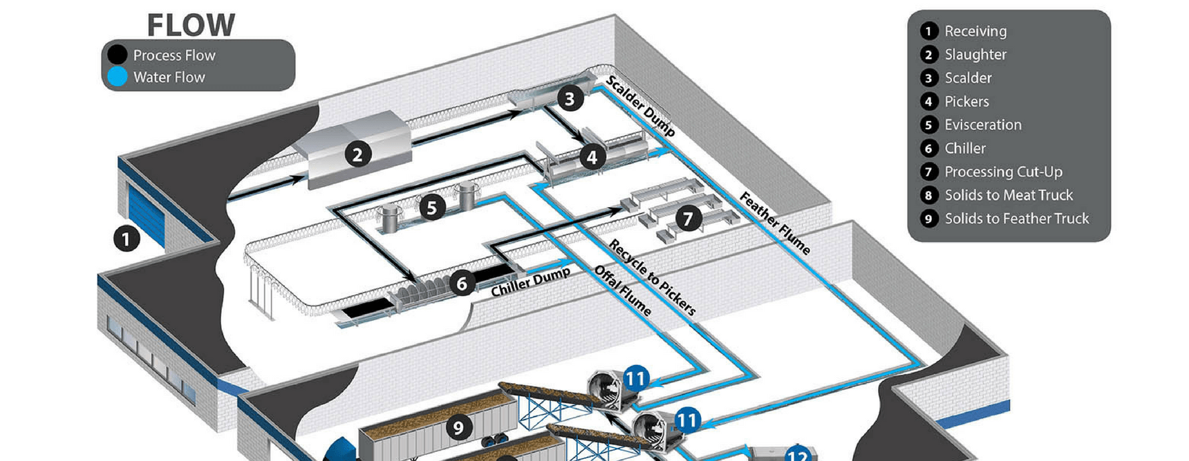 hight resolution of poultry processing plant layout wastewater flow infographic