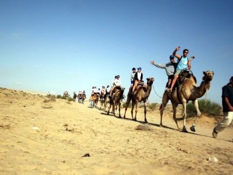 a line of young people on camels