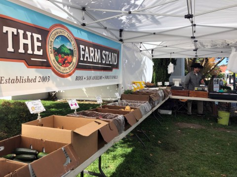 The San Anselmo farmstand on a recent Friday. /Alix Wall