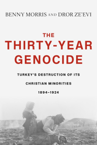 "Cover of ""The Thirty-Year Genocide"" by Benny Morris"