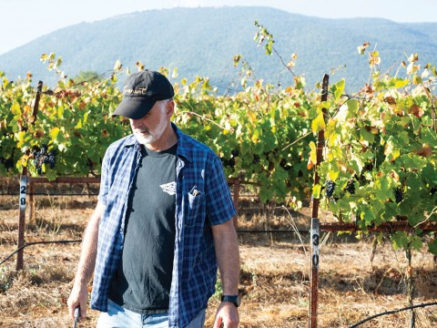 Jeff Morgan, co-owner of Berkeley's Covenant Winery, opened Covenant Israel in 2013.