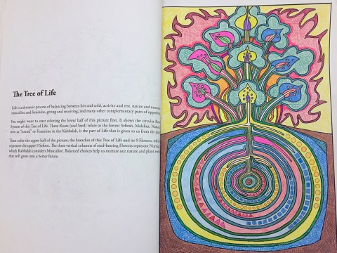 "The Tree of Life in ""The Kabbalah Coloring Book: A Book of Creation."""