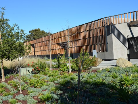 The exterior of Kol Emeth's new building features prominent landscaping and a wooden lattice along the building.