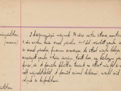 The U.S. Holocaust Memorial Museum digitized pages of the Fenves family's recipe book. (Photo/U.S. Holocaust Memorial Museum)