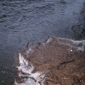 High water piles up debris on the banks of Churchpool