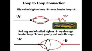 loop to loop connection