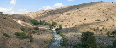 "The Jordan River (pictured) is ""the only river on planet earth that on its good days is a few feet wide, and people claim that it has a bank 40 miles wide [spanning across Judea and Samaria],"" says Dani Dayan, chief foreign envoy of the Yesha Council. Credit: Beivushtang via Wikimedia Commons."