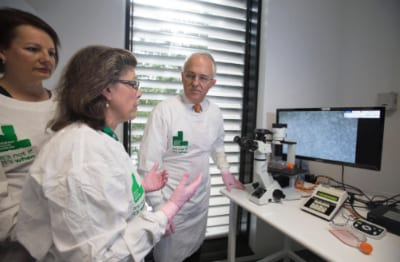 Michelle Haber introduces  Malcolm Turnbull to her research