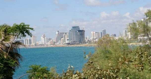 Tel Aviv sky line    Photo: Henry Benjamin