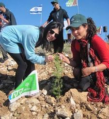 Planting at Ramot Forest. Yoav Devir