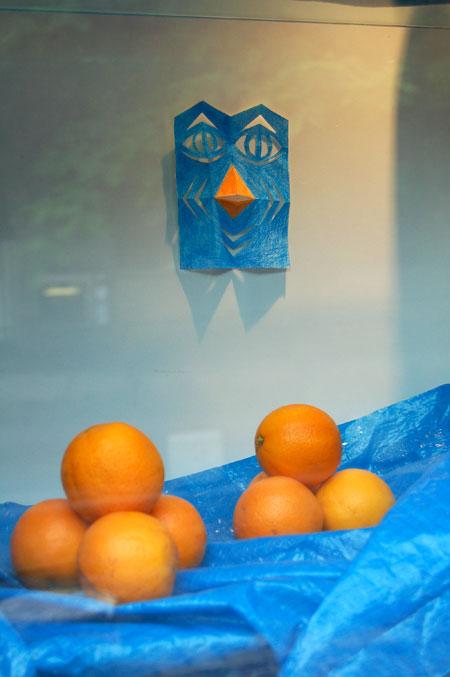 l'oiseau-bleu-aux-oranges-DSC_9140