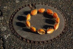 cercle de prisons oranges 2