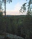 Metsämaisema Jääskelän Sammalistonkalliolta.