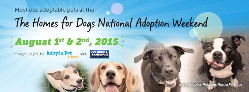 Dog Adoption Events In Houston This Weekend