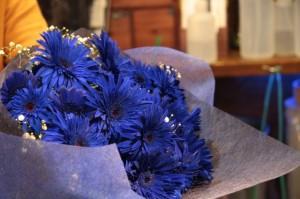 青いガーベラ