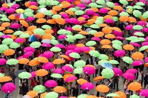 Les parapluies de Brest