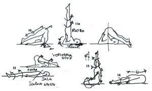 Yoga of Asana Mechanics