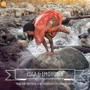 wirkung-von-yoga-auf-die-hormone
