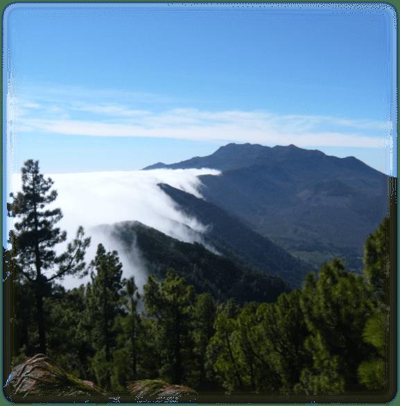 Wolken zu Klarheit