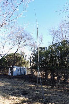 Fiberglass antenna mast