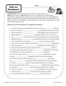 What Are Homophones Homophone Worksheet