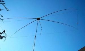 15 Meter Moxon Beam in Action
