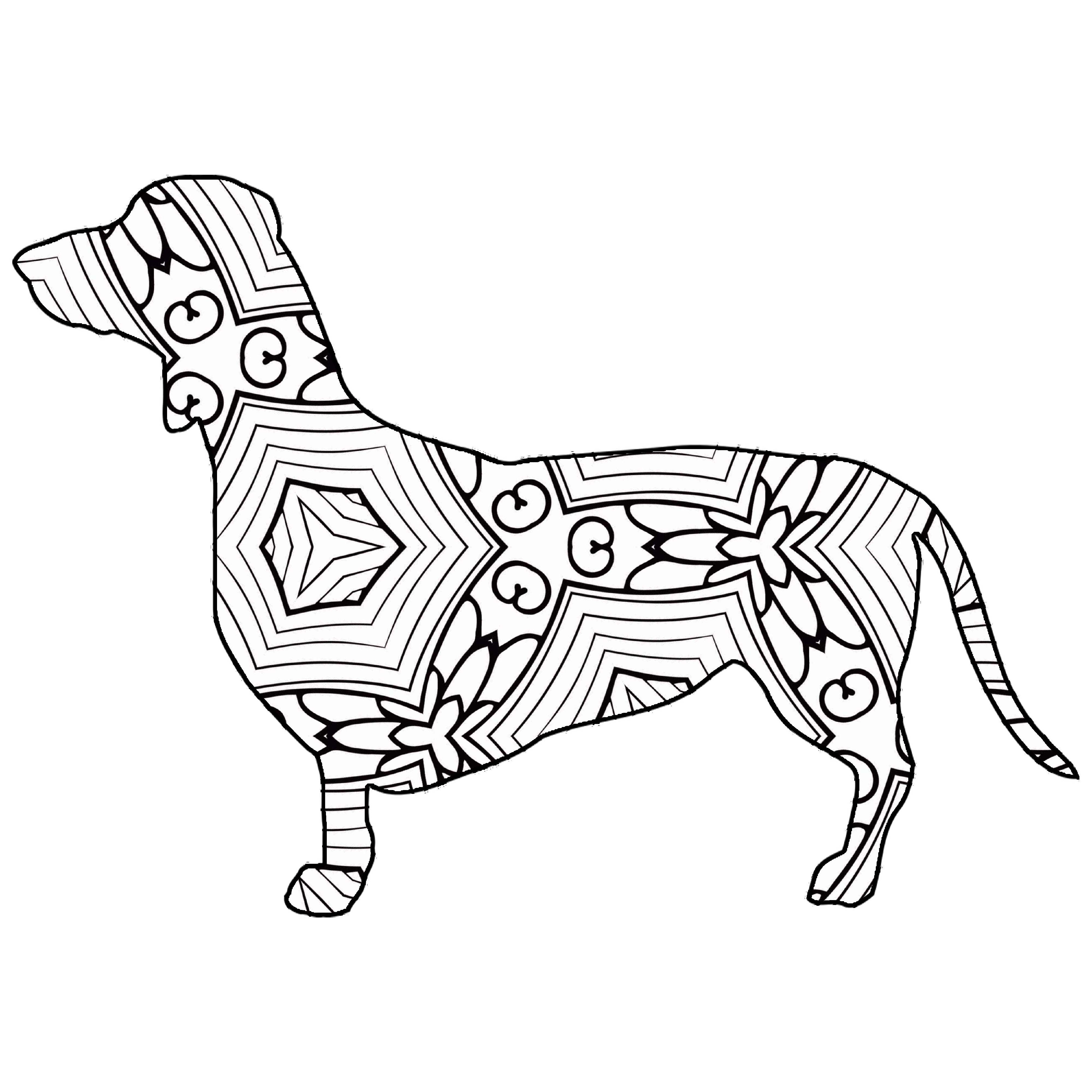 Dachshund Coloring Pages Pattern