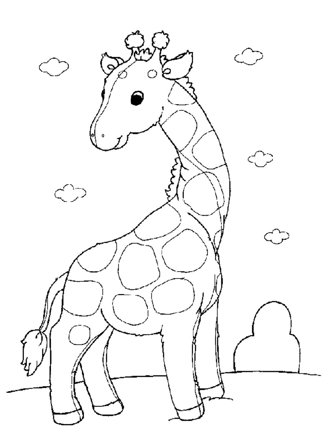 Baby Animal Coloring Pages For All Ages