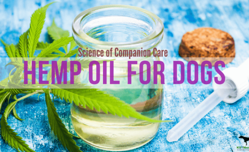Dog Hemp Oil