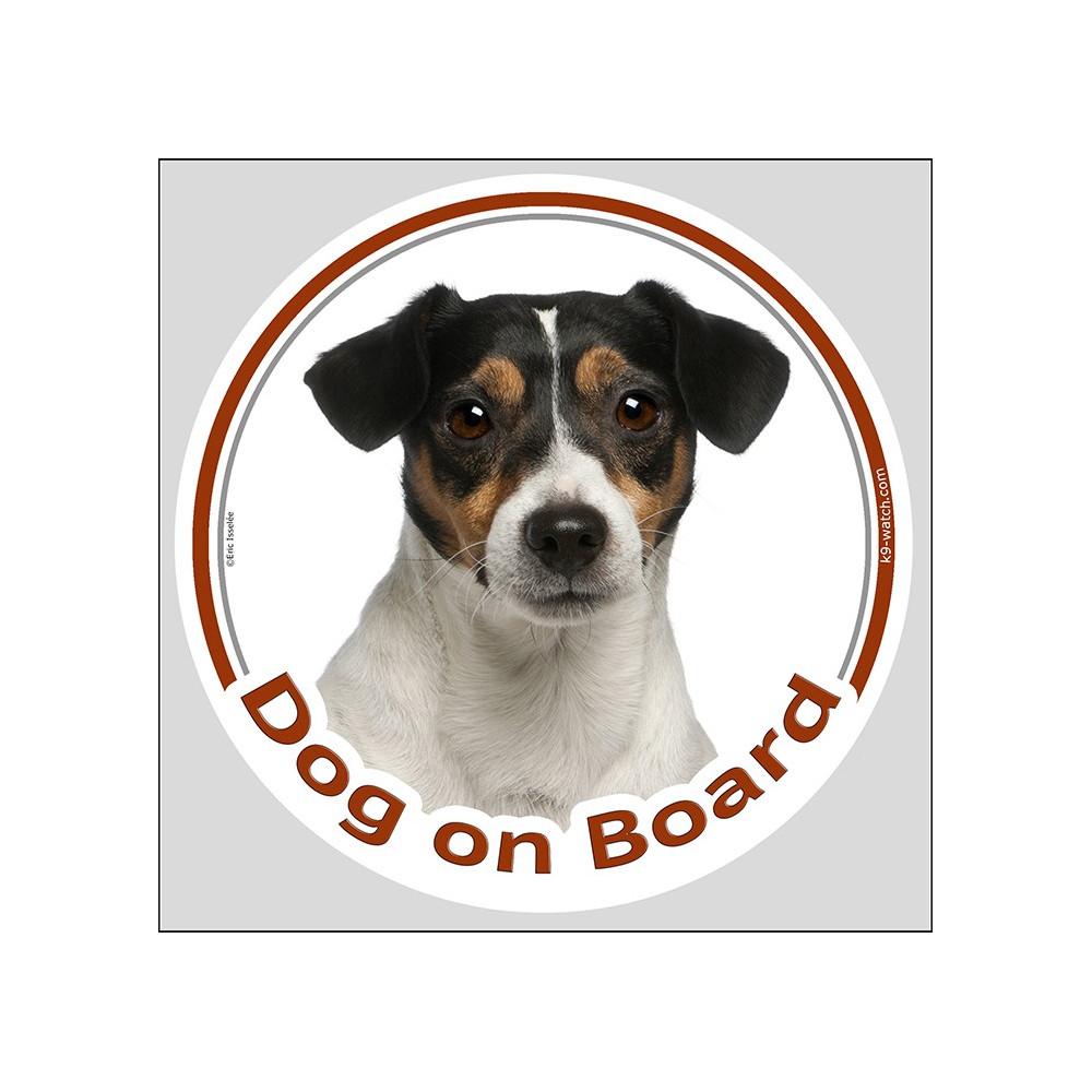 medium resolution of circle sticker dog on board 15 cm tricolour jack russell terrier head