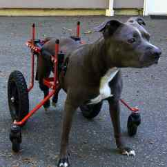 Wheel Chairs For Dogs How To Slipcover A Chair With Arms Wheelchair Front Support Kit K9 Carts