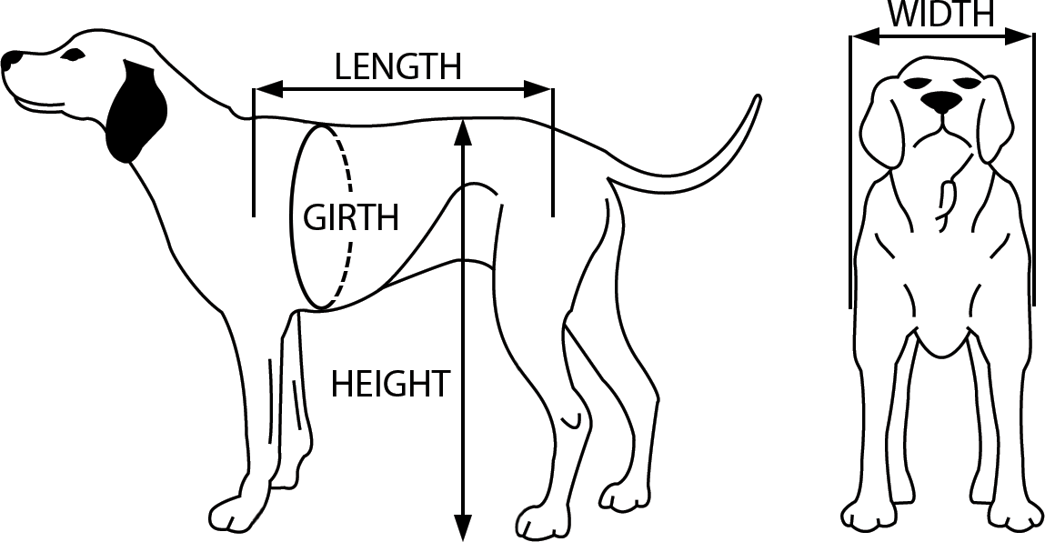 Pet Wheelchair Measurements for Custom-Fitted K9 Carts