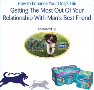 How-to-Enhance-your-Dogs-Life-eBook-cover