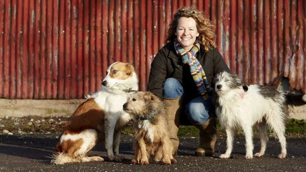 Kate Humble: 'Dogs Are Most Successful Animal on the Planet'