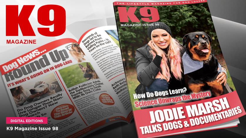 k9-magazine-view
