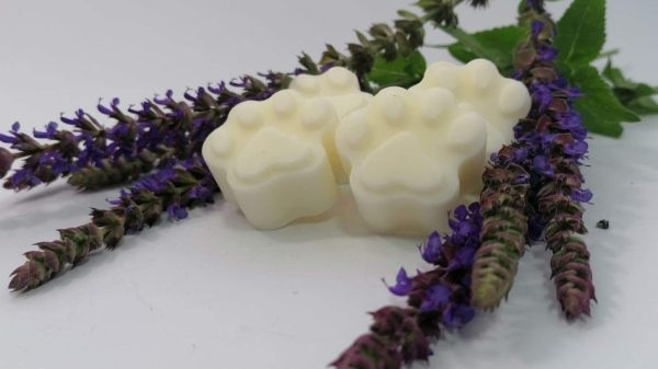 These Wax Melts Only Include Things Dog Owners Will Love