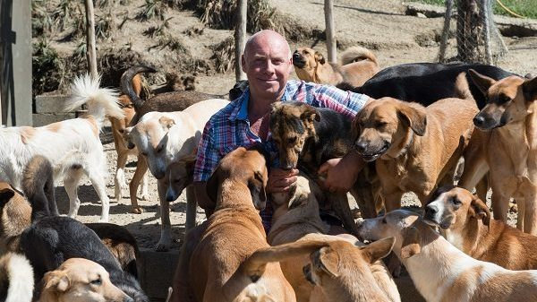 This Man Shares His Home in Morocco With 150 Dogs, And He Tells Us Why