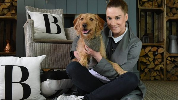 Celebrity Dog Owner Visits Devon to See Just How Dog Friendly It Really Is