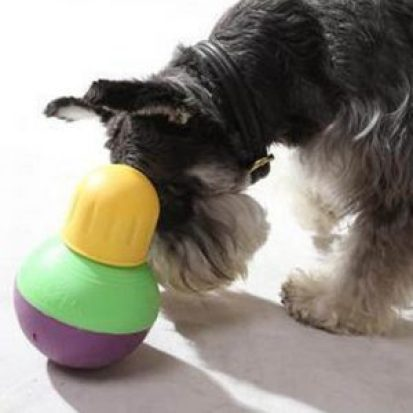 treat dog toys