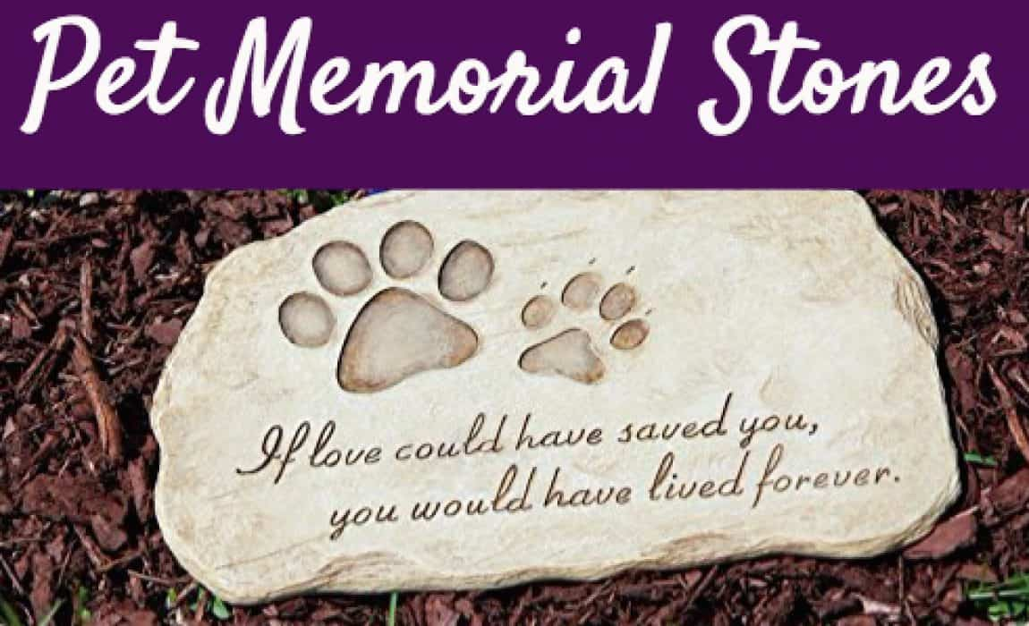 12 touching pet memorial