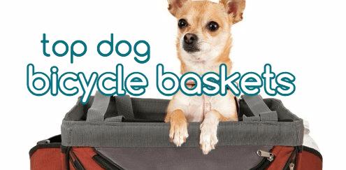 dog bike basket reviews
