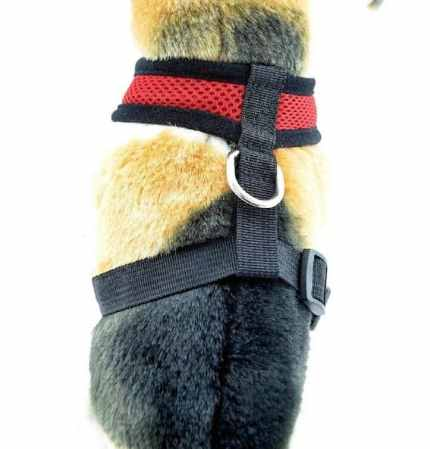 dog collar for pulling