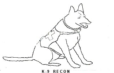 Welcome to K-9 Search & Rescue Of Kansas