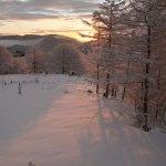 Amanecer invierno, jardín nevado