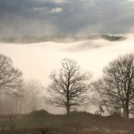 casa rural ecológica Kaanoetxea-galeria-9 - robles en el mar de niebla