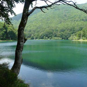 casa rural ecológica Kaaño etxea - lagos Leurtza