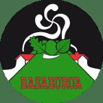 logo Valle Basaburua Navarra
